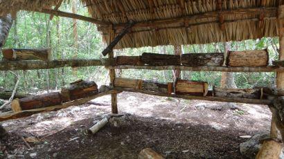 Maya apiary, Aldea Ahau Chooc, Quintana Roo.