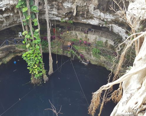 Cenote Oxman, view from above.