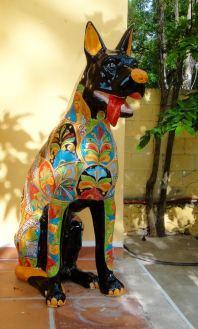 hacienda_coba_dog